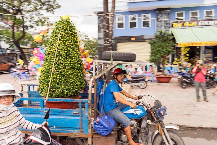 The Floating Flower Market of Ben Binh