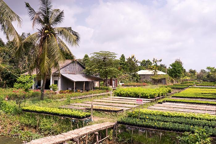Flower Village SaDec